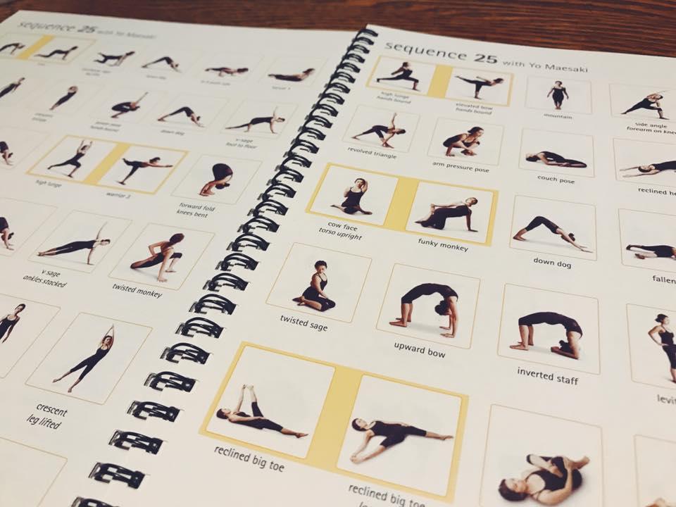 """Biotope Yoga Studio 【ビオトープヨガスタジオ】 - 後屈しよう!しなやかに反るって何でしょう 新しい身体の歴史作りws """"yogahour""""  コンパス持ってyogaの旅への写真2"""
